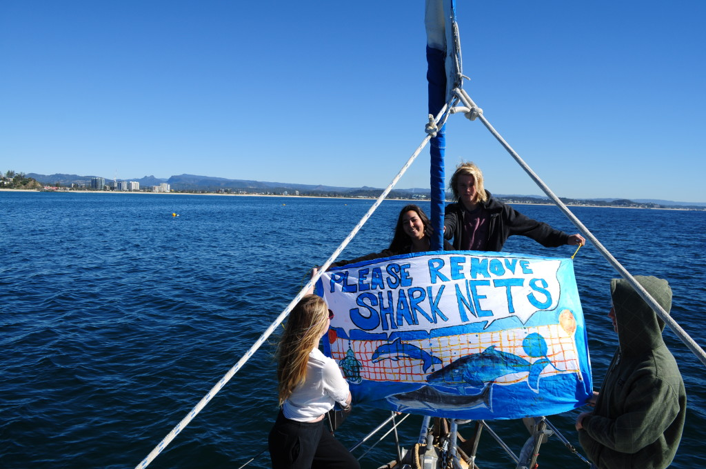 Migaloo 2 and crew. Remove shark nets