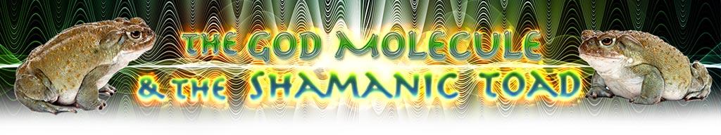 ShamanicToadMovieHeader